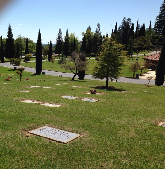 Newcastle Cemetery view